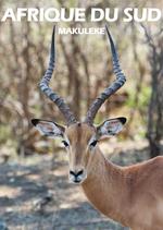 Affiche Afrique du Sud - Makuleke