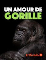 Affiche Un amour de gorille