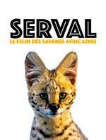 Affiche Serval, le félin des savanes africaines