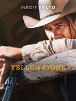 Affiche Yellowstone