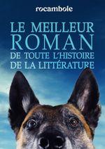 Couverture Le Meilleur roman de toute l'histoire de la littérature