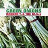 Pochette Green Onions