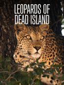 Affiche L'île aux léopards