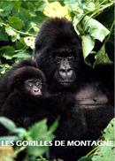 Affiche Les gorilles de montagne