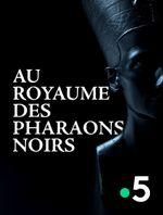 Affiche Au royaume des pharaons noirs