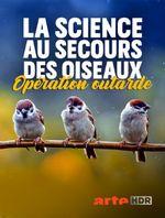 Affiche La science au secours des oiseaux : Opération outarde