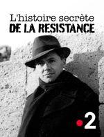Affiche L'histoire secrète de la résistance
