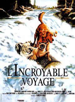 Affiche L'Incroyable Voyage