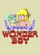 Jaquette Wonder Boy
