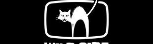 Cover WILD SIDE TV (Liste des films Wild Side disponibles gratuitement sur Molotov)