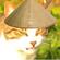Avatar PetitChatBrutal