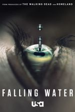 Affiche Falling Water
