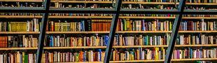 Cover Les livres présents dans ma bibliothèque (cinéphilique) :